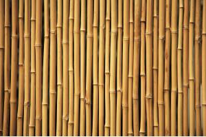 Бамбуковый паркет — Обзор полов